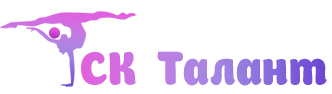 sk_logo3